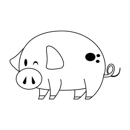 cute animal pig farm mammal pet cartoon vector illustration graphic design