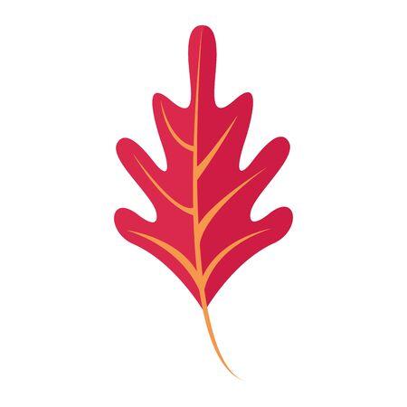 Autumn leaf season nature cartoon symbol vector illustration graphic design