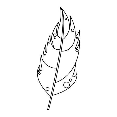 feather plume decoration art isolated cartoon vector illustration graphic design