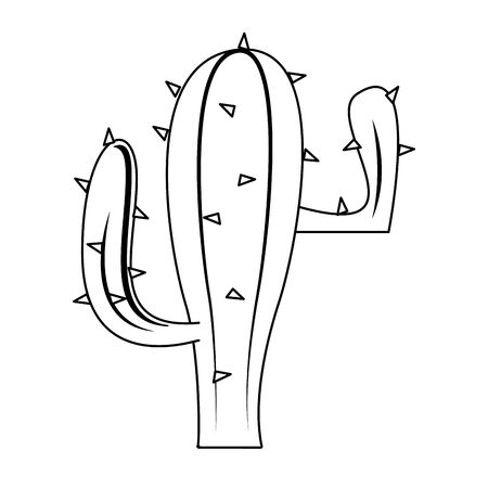 mexico culture and foods cartoons cactus vector illustrationgraphic design