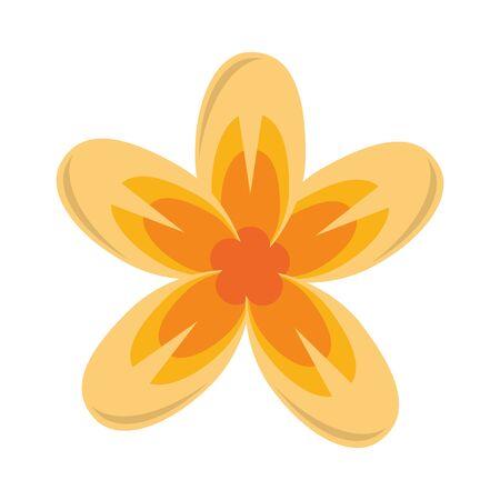 lotus blossom flowers nelumbo nucifera gaertn icon cartoon vector illustration graphic design  イラスト・ベクター素材