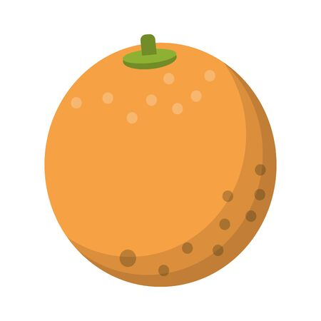 Orange fruit cartoon isolated vector illustration graphic design