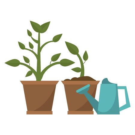 Gardening plants and tools water can