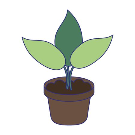 Plant in pot cartoon isolated vector illustration graphic design