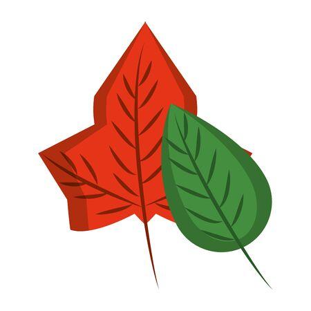 Autumn leaves nature cartoon isolated symbol vector illustration graphic design 일러스트
