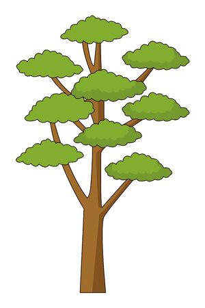 Nature tree with leaves park cartoon vector illustration graphic design.