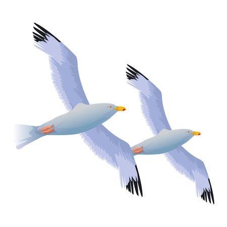 Seagulls birds flying cartoon ,vector illustration graphic design. Иллюстрация