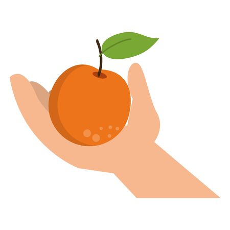 hand holding orange cartoon isolated vector illustration graphic design Иллюстрация