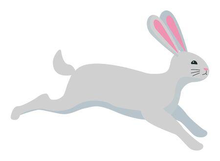 Cute rabbit pet jumping animal cartoon ,vector illustration graphic design.