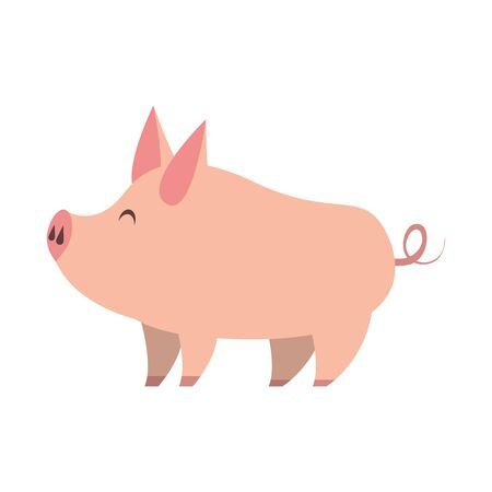 cute animal pig farm mammal pet cartoon vector illustration graphic design
