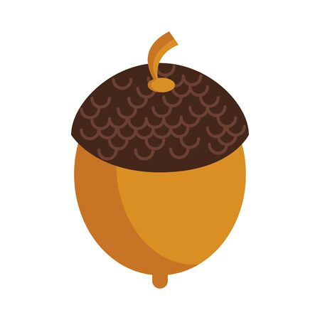 Nut autumn snack cartoon isolated vector illustration graphic design