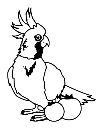 parrot wild cockatoo with blueberries icon cartoon in black and white vector illustration graphic design Ilustração