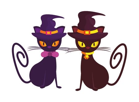 halloween cats with witch hats characters vector illustration design