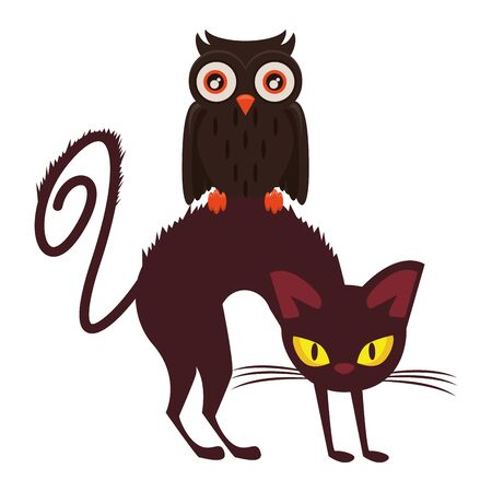 halloween owl bird with cat vector illustration design