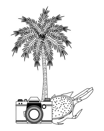 summer beach and vacation with photographic camera, tropical fruit and palm icon cartoon in black and white vector illustration graphic design