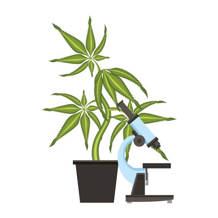 cannabis martihuana medical marijuana sativa hemp medicine plant with microscope cartoon vector illustration graphic design