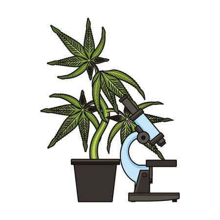 cannabis martihuana medical marijuana sativa hemp medicine plant with microscope cartoon vector illustration graphic design