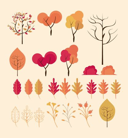 Autumn foliage trees and leaves set of cartoons collection vector illustration graphic design. Illustration