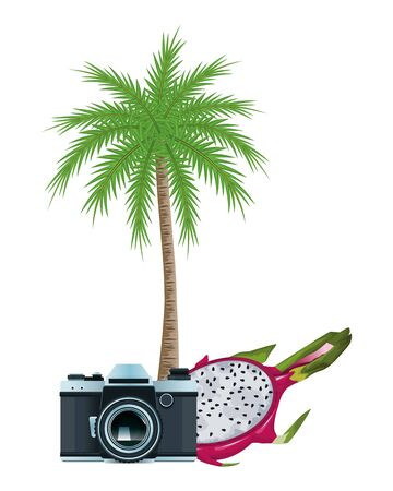 summer beach and vacation with photographic camera, tropical fruit and palm icon cartoon vector illustration graphic design Ilustração