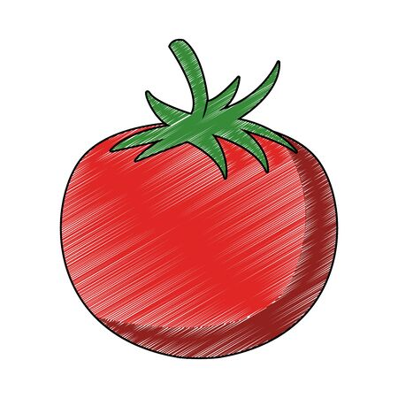 Tomato fresh vegetable vector illustration graphic design Foto de archivo - 130686310