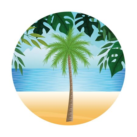 summer beach and vacation with palm icon cartoon in round icon over the beach with seascape vector illustration graphic design