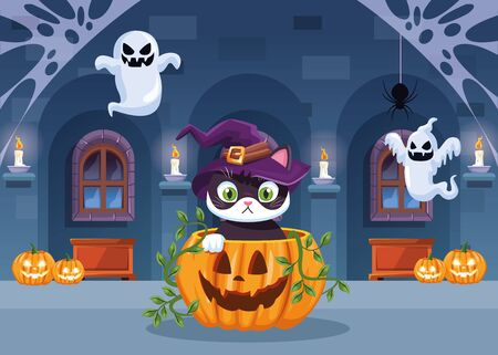 halloween dark scene with cat in pumpkin vector illustration design Stock Illustratie
