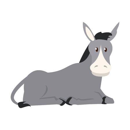 farm cute mammal animal donkey cartoon vector illustration graphic design 矢量图像