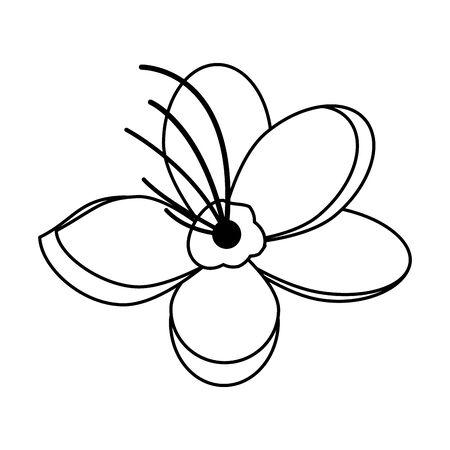 cherry blossom flower icon over white background, vector illustration Vecteurs