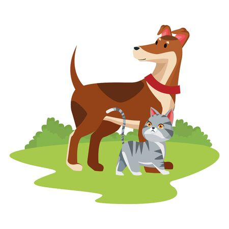 domestic animals and pet with dog and cat over the grass and bush icon cartoon vector illustration graphic design Çizim
