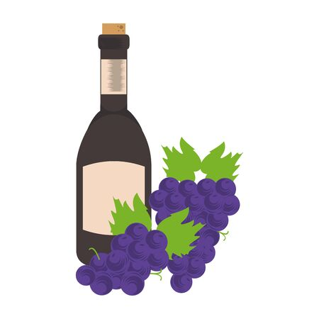 bunch of grapes and bottle of wine icon over white background, vector illustration