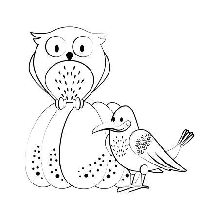Wild animals and autumn season cartoons owl and crow on pumpkin vector illustration graphic design