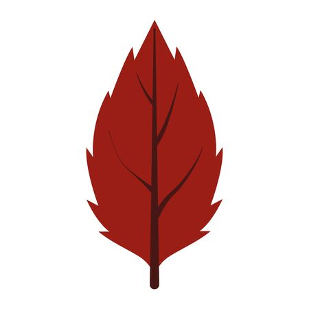 autumn leaf plant seasonal icon vector illustration design
