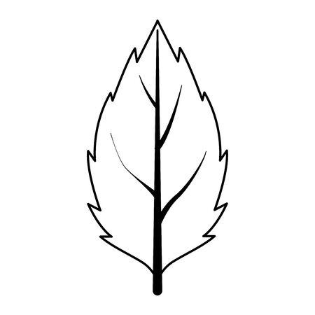 autumn leaf plant seasonal icon vector illustration design