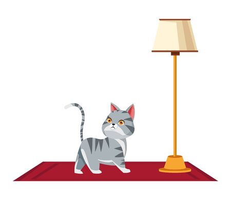 domestic animals and pet with cat over a carpet and floor lamp icon cartoon vector illustration graphic design
