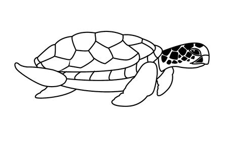 brown sea turtle icon cartoon isolated in black and white vector illustration graphic design