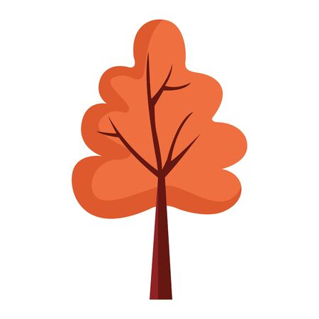 autumn tree plant seasonal isolated icon vector illustration design