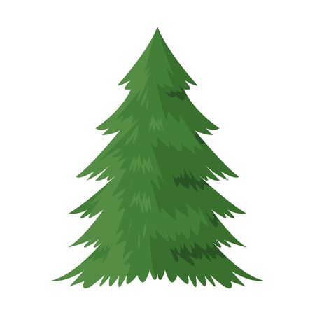 pine tree icon over white background, colorful design. vector illustration