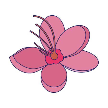 cherry blossom flower icon over white background, vector illustration