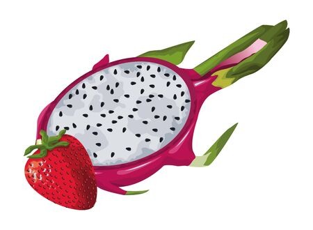 exotic tropical fruit with pitahaya and strawberry icon cartoon vector illustration graphic design Banco de Imagens - 132011610