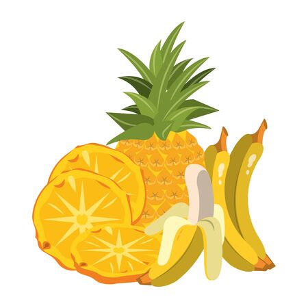 banana and pineapple slices and fruit over white background, vector illustration