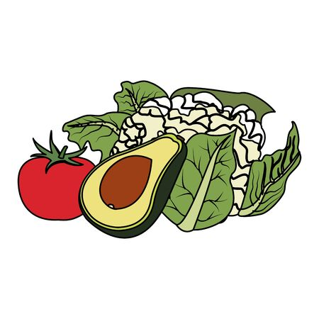avocado with tomato and cauliflower vegetables over white background, vector illustration