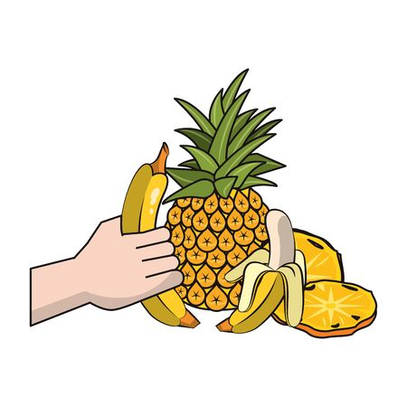 pineapple and banana fruits over white background, colorful design. vector illustration