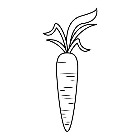 healthy diet nutrition eating lifestyle carrot cartoon vector illustration graphic design Иллюстрация