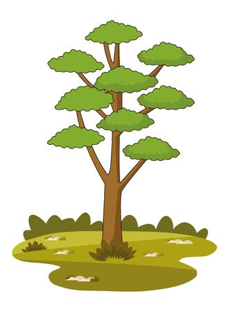 Nature tree on grass at nature cartoons vector illustration graphic design. Stock Illustratie