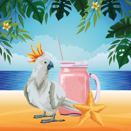 Playa de verano y vacaciones con estrellas de mar, cacatúas y batidos icono de bebida de dibujos animados sobre la playa con diseño gráfico de ilustración de vector de paisaje marino Ilustración de vector
