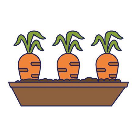 carrot harvest vegetables cartoon icon ilustration vector