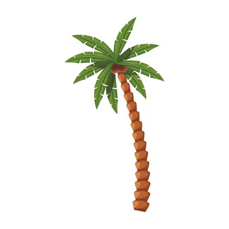 palm with coconuts icon over white background, vector illustration