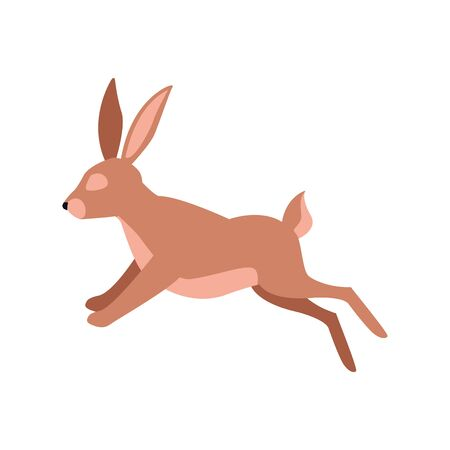 cartoon rabbit jumping over white background, colorful design. vector illustration