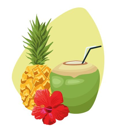 pineapple and coconut drink and tropical flower over white background, colorful design , vector illustration