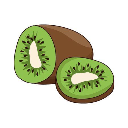 halved kiwi fruit icon over white background, vector illustration 向量圖像